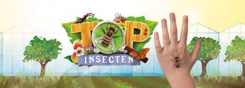 Insectenplaatjesverzamelactie